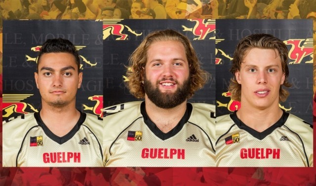 Gryphon Football Players of the Week (l-r) - Daniel Ferraro, Matt Nesbitt, Cam Walker Photo: gryphons.ca